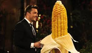 Chris with an ear of corn